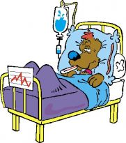 dog in hospital bed