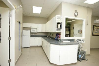 kitchen and feeding station